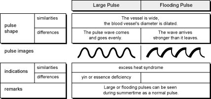 Comparison of Large and Flooding Pulses