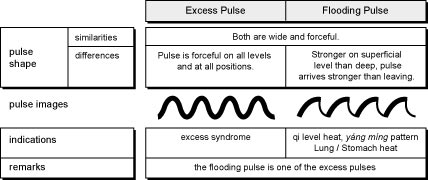 Comparison of Excessive and Flooding Pulses