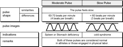 Comparison of Slow and Moderate Pulses