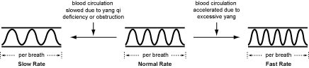 Normal Pulse Rate
