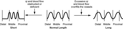 Normal Pulse Length