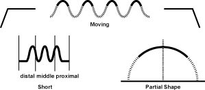 The Moving Pulse